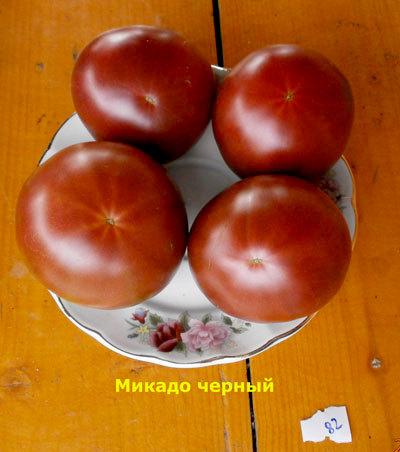 томат Микадо черный