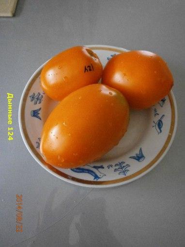 томат Дынные