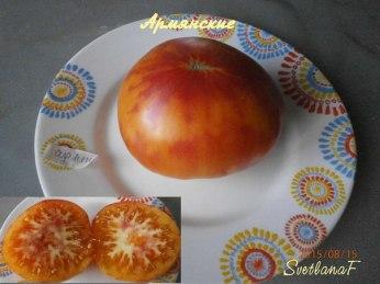 томат Армянские