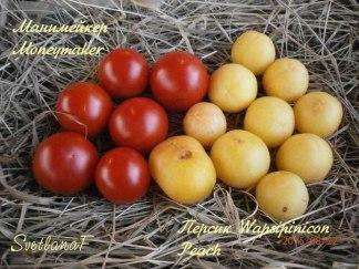 томаты Манимейкер и Белый персик