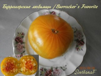 томат Burracker's Favorite