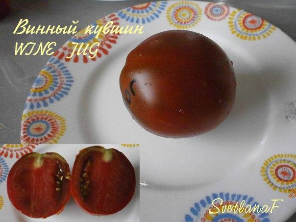 томат WINE JUG
