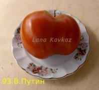 томат Вова_Путин
