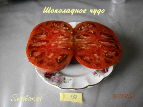 томат Шоколадное чудо
