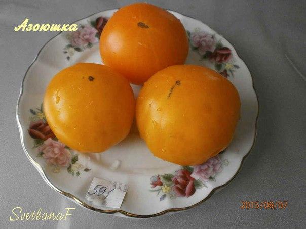 томат Азоюшка