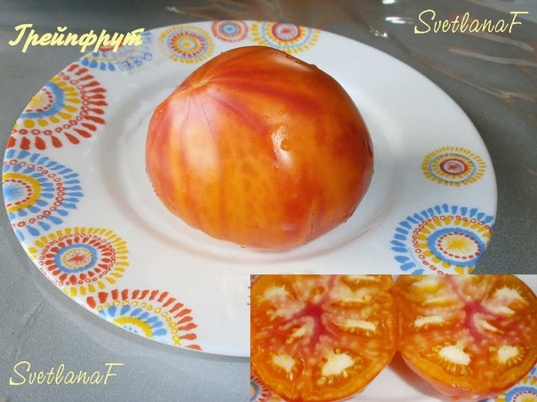 томат Грейпфрут