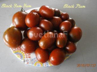 Black Plum (Чернослив)