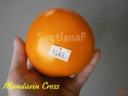 Mandarin Cross