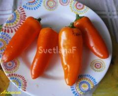 pepper apelsin