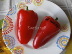 pepper Nocera Rosso